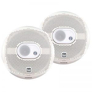 Dual_DMS365_speakers